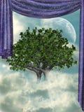 在天空的结构树 库存图片