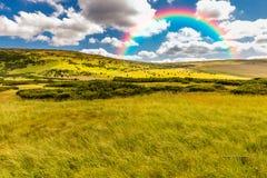 在天空的美丽的彩虹 库存照片