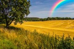 在天空的美丽的彩虹 图库摄影
