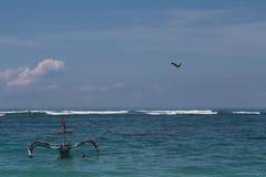 在天空的老鹰在海和小船 免版税库存图片