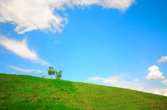 在天空的蓝色草绿色小山 免版税库存照片