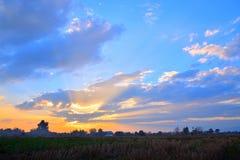 在天空的金黄光在日落期间在晚上 库存图片