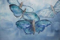 在天空的飞行的蓝色蝴蝶 免版税库存图片
