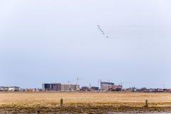 在天空的飞行表演在克拉斯诺达尔机场飞行学校上 以纪念祖国的防御者的Airshow 在天空的米格-29 免版税图库摄影