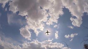 在天空的飞行飞机在太阳的背景中 影视素材