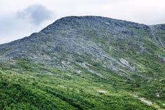 在天空背景的美好的绿色山坡 库存图片
