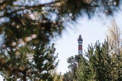 在天空蔚蓝和分支的背景的红色和白色灯塔 图库摄影