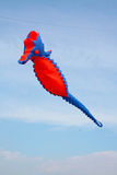 在天空-自由的风筝 免版税图库摄影