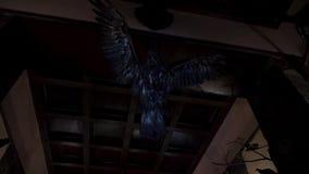 在天花板的一只被充塞的老鹰 股票视频