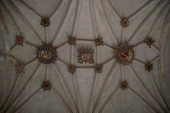 在天花板的几何线 库存照片