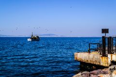 在天际的渔船航行 免版税图库摄影