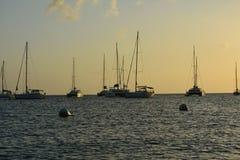 在天际的许多帆船在日落 库存图片