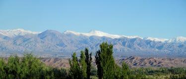 在天际的绿色山谷和雪山 库存图片
