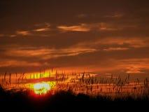 在天际线的太阳 免版税库存照片