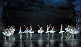 在天鹅小组芭蕾掩藏的邪魔天鹅湖 库存图片