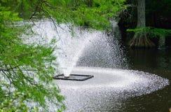 在天鹅湖的喷泉 免版税图库摄影