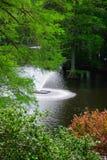 在天鹅湖的喷泉 免版税库存图片