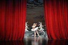 在天鹅湖芭蕾结束时天鹅湖戏剧这为时场面  免版税库存照片