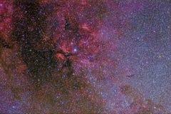 在天鹅的星萨德尔和复杂他的星云 免版税图库摄影
