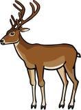 在天鹅绒的鹿 皇族释放例证