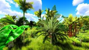 在天3d翻译期间的热带密林 免版税库存照片