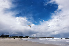 在太平洋海滩的多云天空 库存照片