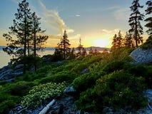 在太浩湖的日落 库存照片