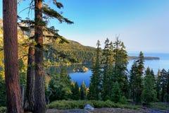 在太浩湖,加利福尼亚, U的杉木森林周围的鲜绿色海湾 免版税图库摄影