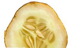 在太熟黄瓜关闭的种子 免版税库存图片