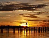 在太阳上升前的时间 图库摄影