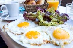 在太阳下的准备的鸡蛋 免版税库存照片