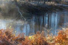 在太阳天气的秋天木头在河 免版税库存照片