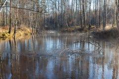 在太阳天气的秋天木头在河 库存图片