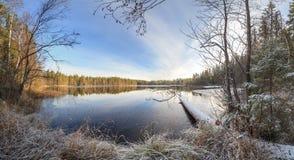 在太阳天气的秋天木头 免版税图库摄影