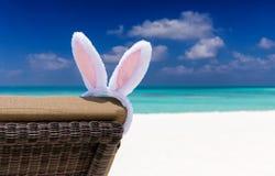 在太阳椅子的复活节兔子耳朵在一个热带海滩设置 库存照片