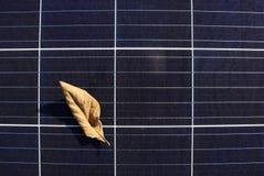 在太阳电池板表面顶视图的干燥叶子 免版税库存照片