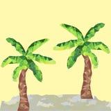 在太阳的低多棕榈 免版税库存照片