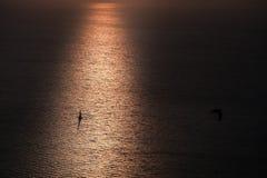 在太阳的船风帆 库存照片