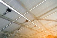 在太阳能电池盘子下,太阳电池板,光致电压,选择el 免版税库存照片
