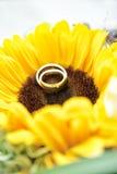 在太阳花的婚戒 免版税图库摄影