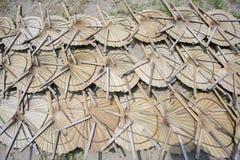 在太阳轻的死的手扶的爱好者叶子棕榈叶下 免版税库存图片