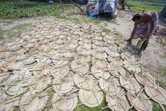 在太阳轻的死的手扶的爱好者叶子棕榈叶下 图库摄影