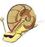 在太阳镜的动画片蜗牛 库存照片