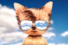 在太阳镜的狗在前面旅行背景中站立 免版税库存图片