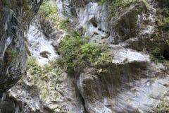 在太鲁阁国家公园的峭壁 免版税库存照片