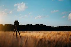在夺取在麦田,在日落天空的剪影的三脚架的照相机风景与whie移动的云彩在背景中 免版税库存图片