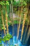 在奇琴伊察附近的Ik-Kil Cenote,墨西哥 图库摄影
