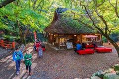 在奈良公园的Koyo角落在奈良,日本 免版税库存照片