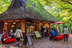 在奈良公园的Koyo角落在奈良,日本 库存图片