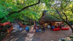 在奈良公园的Koyo角落在奈良,日本 库存照片